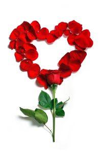 Libérate del dolor menstrual terapia y empoderamiento menstrual