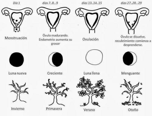 arquetipos menstruales doncella madre hechicera bruja Terapia y Empoderamiento Menstrual