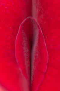 Formación Empoderamiento Menstrual Lorena González