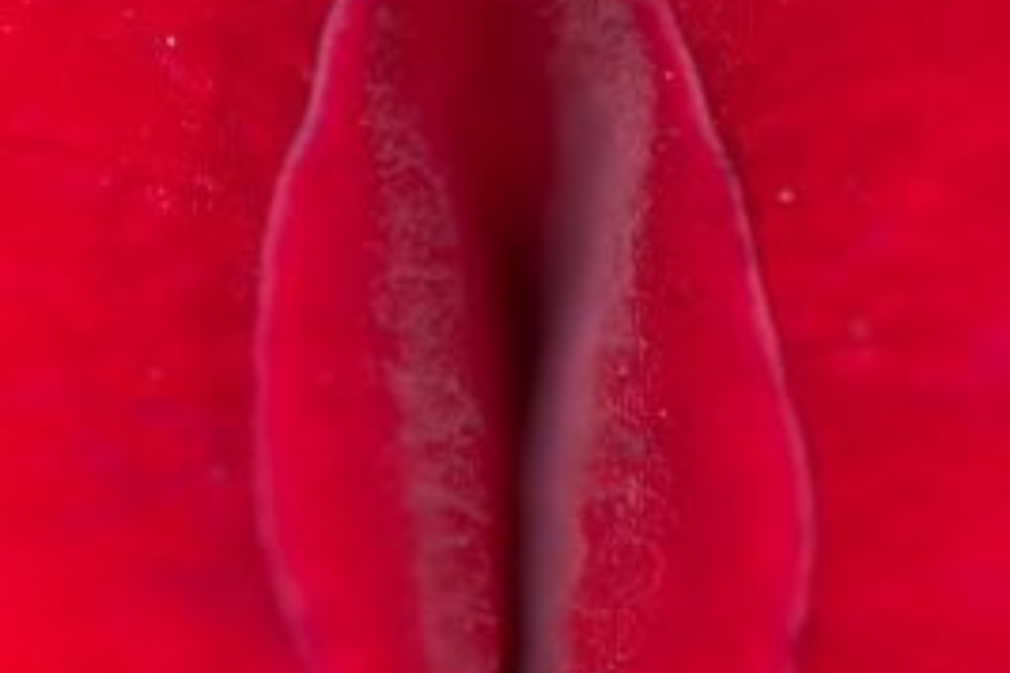Formación Acompañamiento en Empoderamiento Menstrual Lorena González